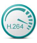 h.264 scale