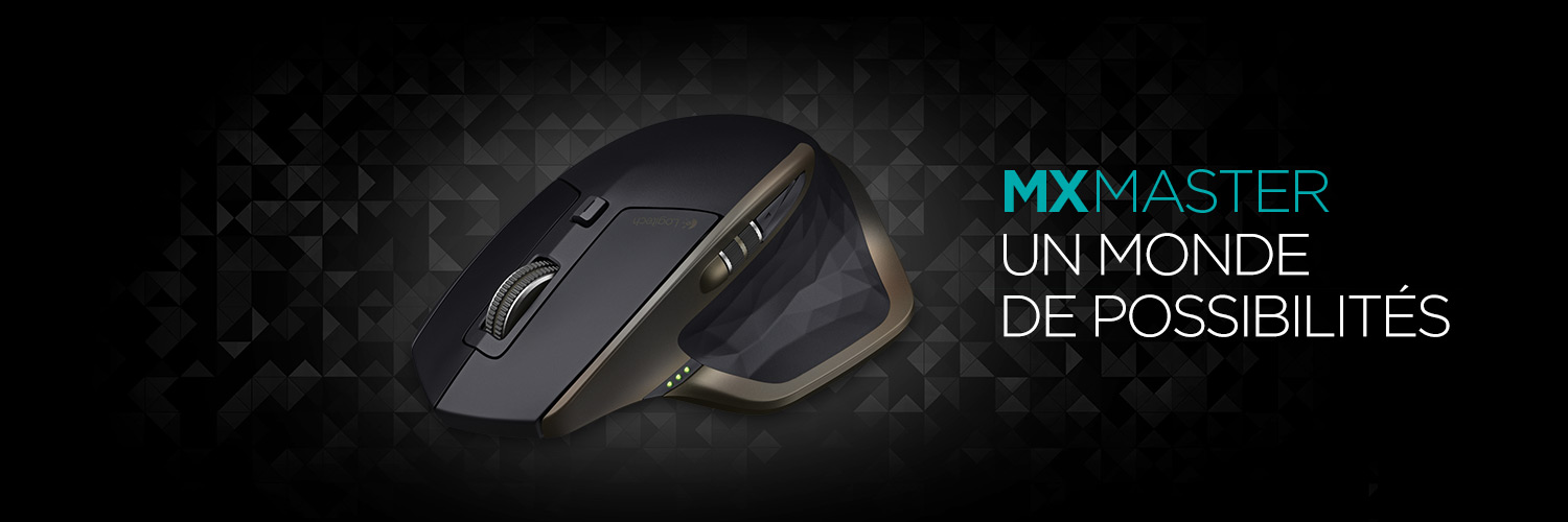 MX Master Wireless Mouse French