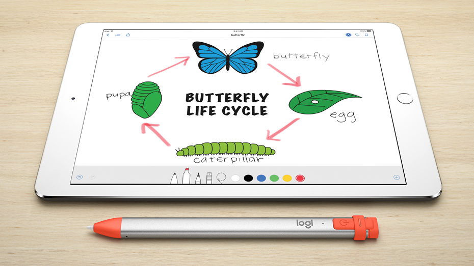 Crayon is perfect tool for Educational Apps